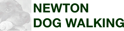 Newton Dog Walking